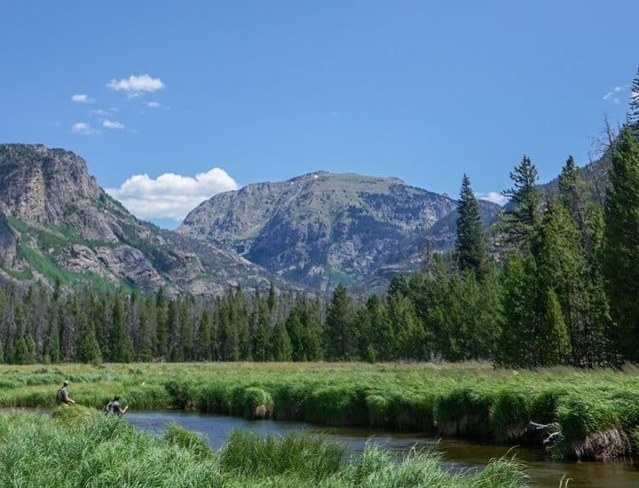 A meadow and a little swamp along a hike in the Colorado mountains.
